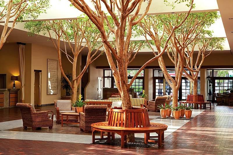 Lobi hotel yang natural modern